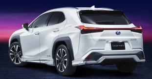 Lexus UX F-Sport Modellista 2