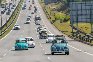 Volkswagen_Beetle_An_Iconic_Gathering_2019_Malaysia_official 19