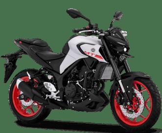 Yamaha MT-25 Indo 2019 BM