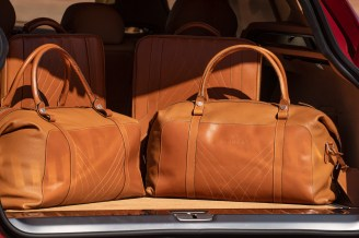 Aston Martin DBX_35_Luggage Set