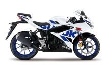 2020 Suzuki GSX-R125 - 13
