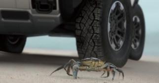 GMC Hummer Crab Walk mode teaser-1