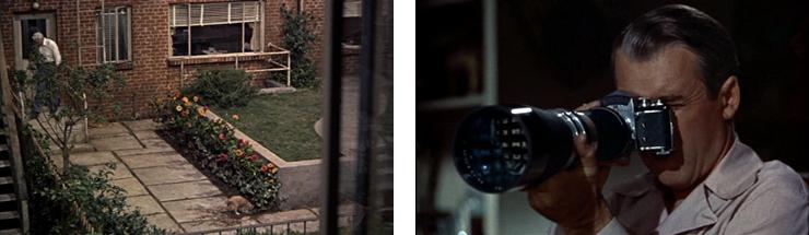scenes-from-rear-window.jpg