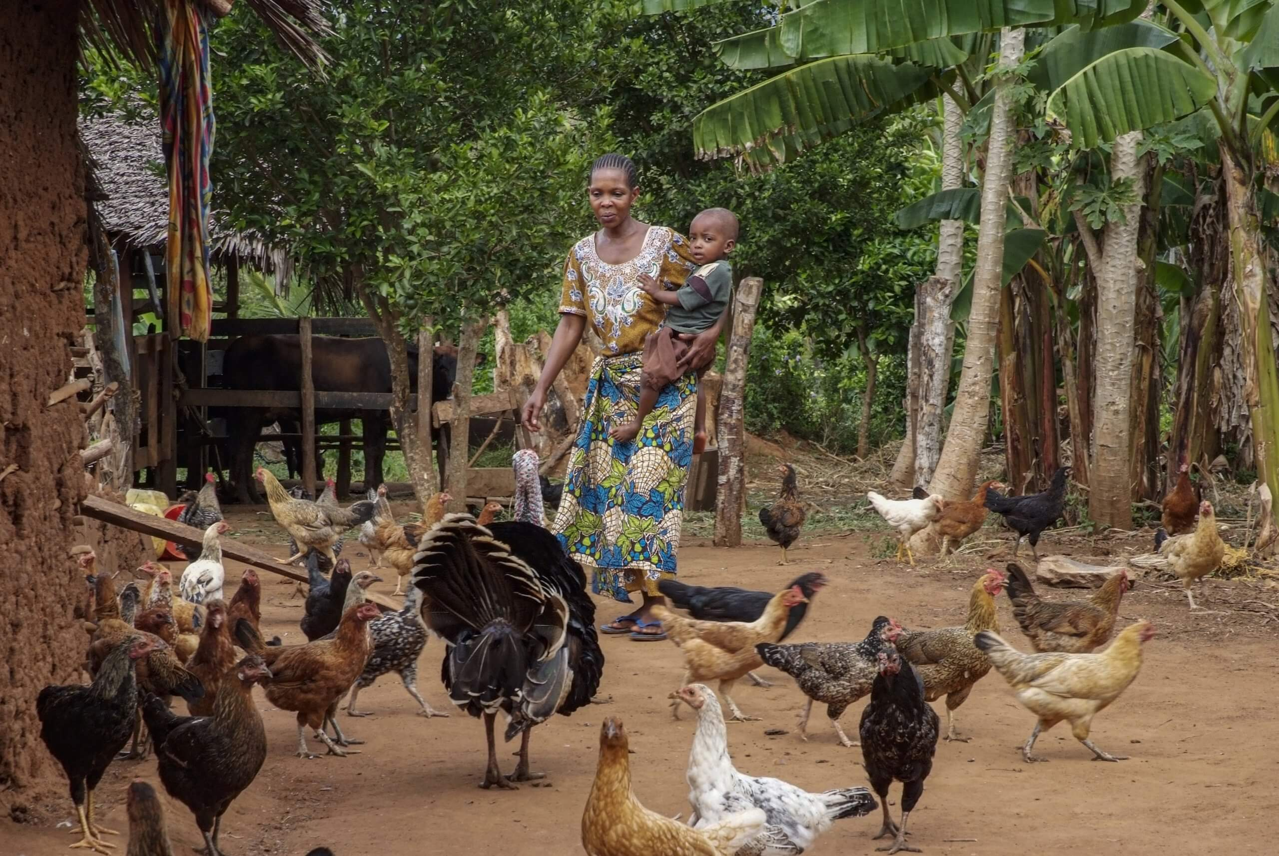13 012 boerin trotsevrouw Mwajuma Ramadhani Mlingano Tanzania 4215 scaled