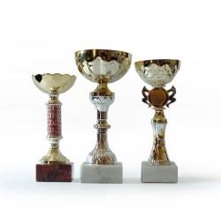 Do business awards help companies?