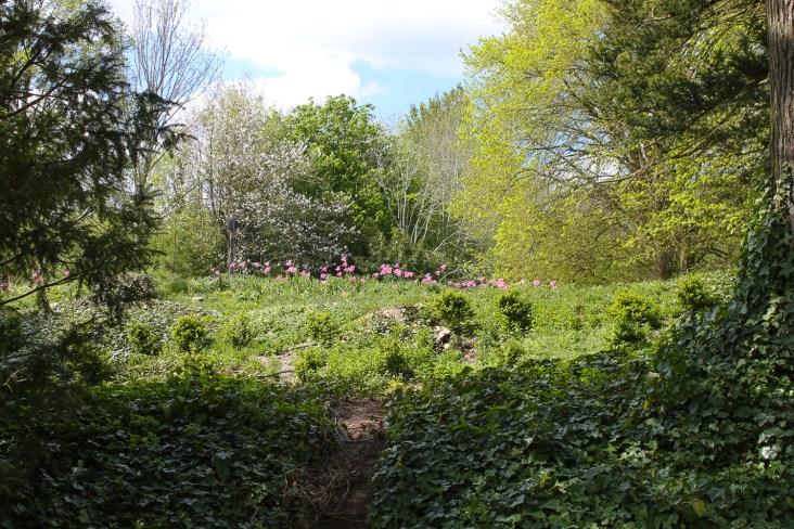 Hughenden-Manor-May-2016-45