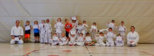 Active children - karate fun