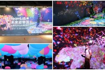 teamLab未來遊樂園來台灣了 拍攝攻略~一起來台北科教館跟光影玩遊戲
