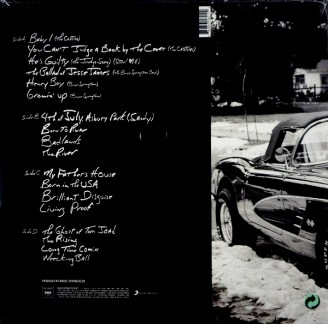 bruce-springsteen-chapter-lp-back-jpg