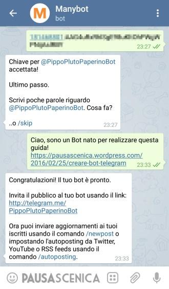 Manybot - Chiave API