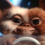 El guión de Gremlins 3 ya está listo