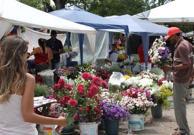 Dia de Finados: diferença no preço de flores chega a R$ 270, segundo pesquisa do Procon-JP