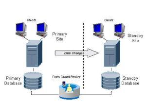 Oracle Data Guard Concept « Pavan DBA's Blog