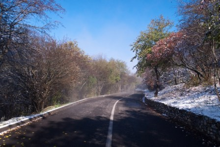 Кольцевая дорога недалеко от домика лесника