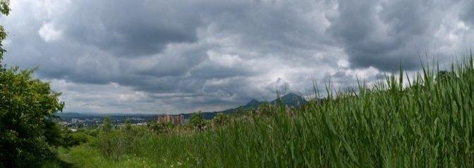 Бештау, камыши - панорама Пятигорска