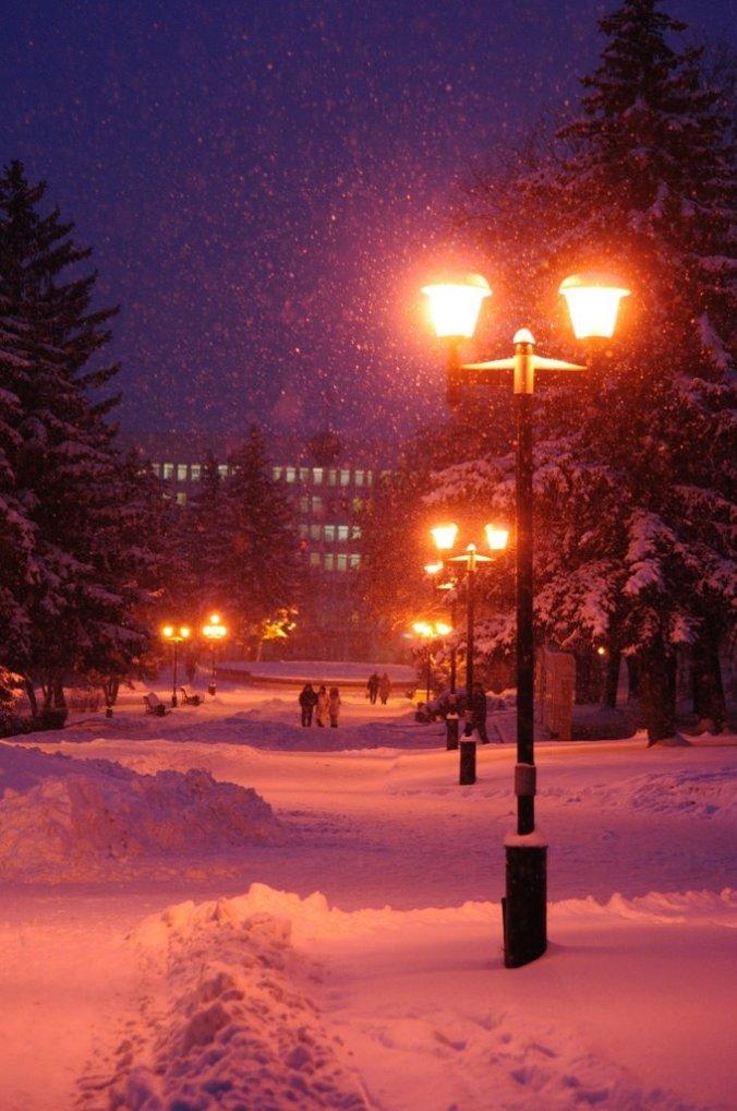 Фонари в снегу