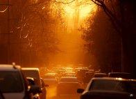 Золотистый свет заливает ул. Козлова
