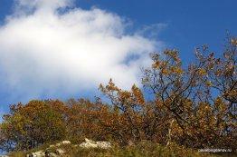 autumn-pyatigorsk-26