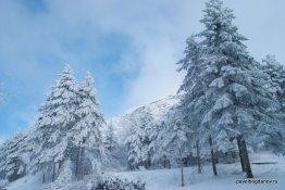 winter-pyatigorsk-17
