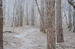 winter-pyatigorsk-20