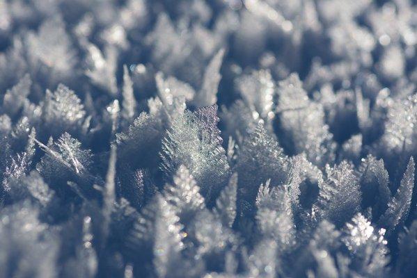 Кристаллы инея на снегу