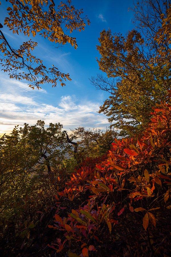 Яркие краски осени на Бештау