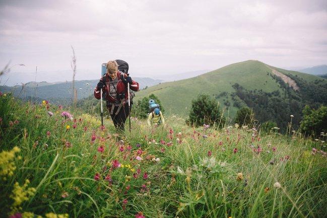 Начинаются альпийские цветы!