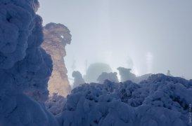 Вид с заснеженными елками в направлении телевышки