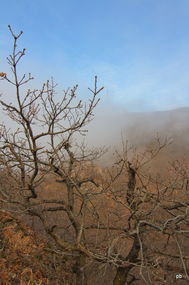 Туман рассеивается. Впереди вершина Машука.