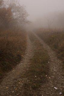 Дорога и туман на Машуке