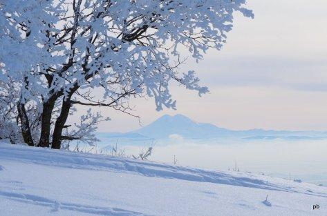 Фото Эльбруса с вершины Машука