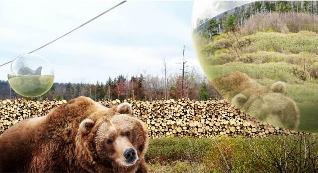 BIG dizajn za Givskud Zoološki vrt: 'Zootopia' nudi 'najslobodniji mogući ambijent' za životinje