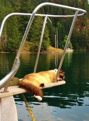 Sleeping on the bow sprit