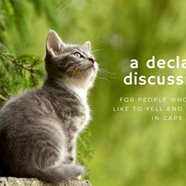 This is How I Feel About Declaws: Now With Minimal Exclamation Points