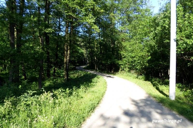 Bieg Chełmońskiego - 8,5 km