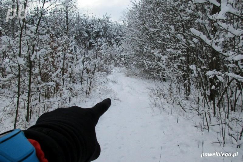 Bieganie zimą w terenie
