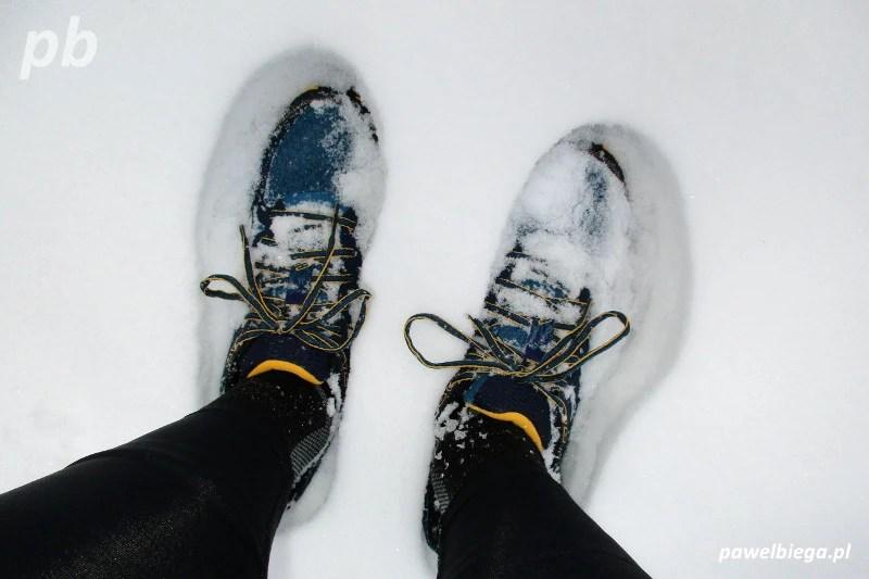 Mizuno Wave Mujin 2 - śnieg