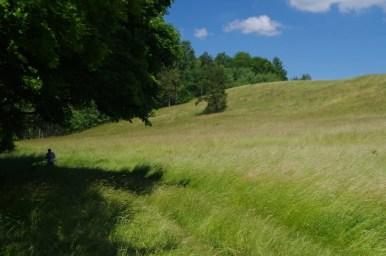 łąka nad jeziorem kiersztanowskim na mazurach