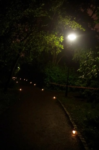 oświetlony krakowski ogród botaniczny podczas nocy muzeów