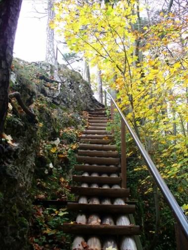 na szlaku z sokolicy na czertezik w jesiennych barwach, pieniński park narodowy