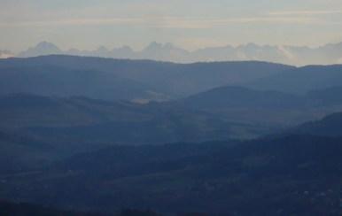 widok ze szlaku z lubomira do lubnia na tatry, na pierwszym planie gorce