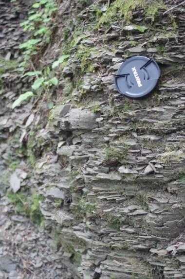 odsłonięcie fliszu karpackiego na szlaku z kudłonia do lubomierza w gorcach