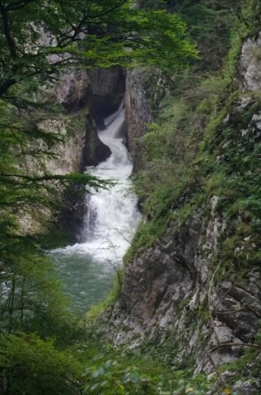 rzeka reka wpływająca do jaskiń szkocjańskich w słowenii