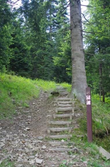 schody na szlaku z koniny na kudłoń w gorcach