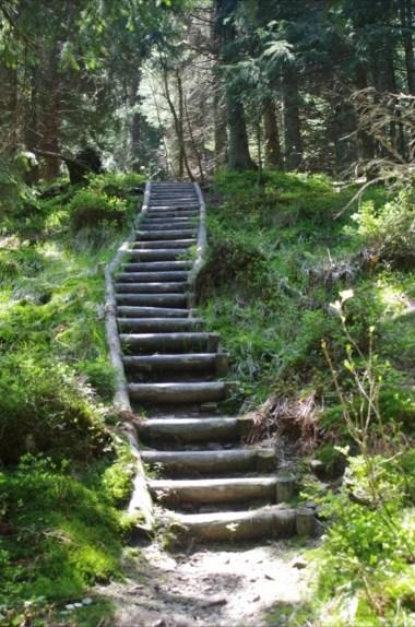 schody na szlaku z lubomierza na kudłoń w gorcach