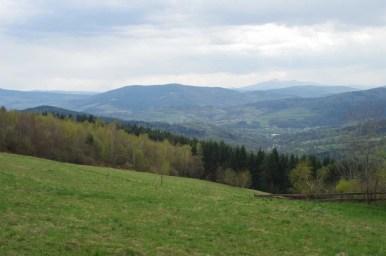 widok spod kudłaczy w beskidzie wyspowym w kierunku babiej góry