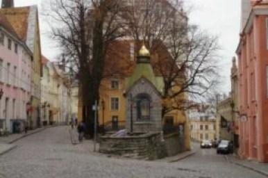 zielony targ w tallinie w estonii