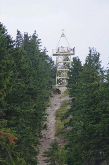 wieża widokowa na baraniej górze w beskidzie śląskim