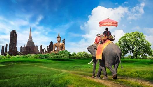 Co ma Dzień Ojca do jeżdżenia na słoniach?