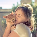 Is it Safe to Kiss Your Cat?